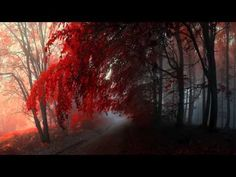 Beautiful Piano Music - Time to Let Go - YouTube