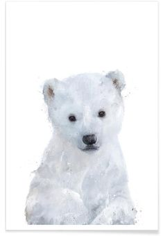 Little Polar Bear Als Premium Poster Von Amy Hamilton Juniqe Polar Bear Paint, Polar Bear Drawing, Polar Bear Tattoo, Art D'ours, Polar Bear Illustration, Framed Art Prints, Canvas Prints, Bear Watercolor, Baby Polar Bears