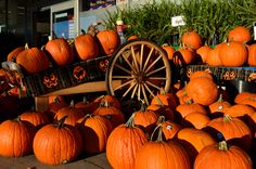 5 Halloween Attractions In Virginia To Mark On Your Calendar
