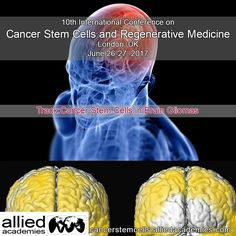 Glioblastoma (GBM) is the most prevalent and malignant primary brain tumor and contains self-renewing, tumorigenic cancer stem cells (CSCs) that contribute to tumor initiation and therapeutic resistance. As normal stem and progenitor cells participate in tissue development and repair, these developmental programs re-emerge in CSCs to support the development and progressive growth of tumors.