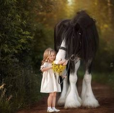 Beautiful Horse Pictures, Beautiful Horses, Animals For Kids, Animals And Pets, Horse Photography, Nature Photography, Horse World, Dog Show, Horse Love