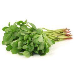 Postelein is een smakelijke en erg gezonde groente, maar ook vrij onbekend. Hoe moet je postelein bereiden, en welke recepten zijn er met postelein?