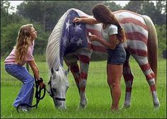 Horse Fancy Dress Ideas: USA