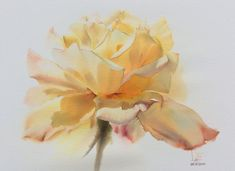 Watercolor without Drawing by LaFe Watercolor Artists, Watercolor And Ink, Watercolor Flowers, Watercolor Paintings, Watercolors, Art And Illustration, Art Aquarelle, Rose Art, Arte Floral