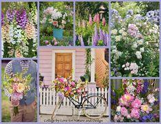 Garden flowers ~