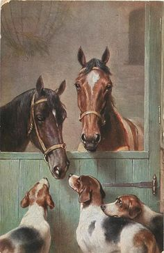 light and dark brown horses look over stable door at three foxhounds