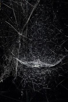 Sonic Cosmic Webs | Tomás-Saraceno www.fallow.com.au/journal