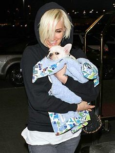 Ashlee Simpson Shows Off Her New Frenchie Puppy