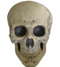 Foam Skull Prop Halloween Decoration approx 9.5 in | Nightmare Factory