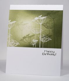 Queen Anne's lace by Heather Telford, via Flickr