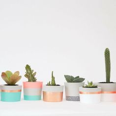 Shop our fabulous range of Coral & Herb pots and planters - they're the perfect way to spruce up a dull corner.  Search 'Coral and Herb' at http://ift.tt/1v9jaEU for details