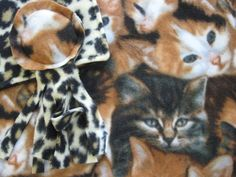 www.catchinglizards.com  SLEEPY KITTENS Catnip Blankiet and Toy Combo  Beautiful; Soft Fleece Print with a Equally Soft Cheetah Print Fleece on the Back !!!! Along with that you get a Stella the Sea Creature Toy !!! Each Blanket has a Generous Hand Full of 100% Organic Catnip Grown in Montana. ONLY THE BEST !!!!!  blanket 18″ x 24″ in size