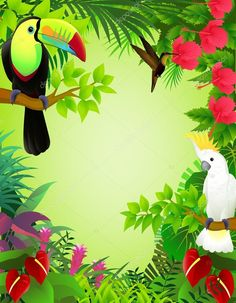 Tropical Stock Photos and Images. Tropical pictures and royalty free photography available to search from thousands of stock photographers. Tropical Design, Tropical Art, Tropical Birds, Jungle Illustration, Free Vector Illustration, Illustrations, Images Jungle, Loro Animal, School Cupcakes