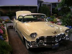 "My mom had a 1955 Caddie like this with a continental kit. She called it ""the golden goddess."""