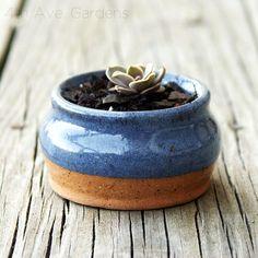 clay + blue + flower + wood