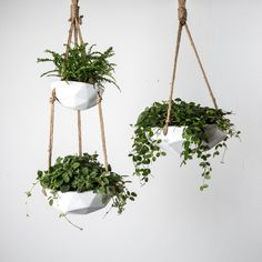 Our Arden Hanging Planter is a light concrete planter that comes in two different styles. These geometric planters can be hung with any of your favorite potted plants inside. Joanna Chip Gaines, Diy Hanging Planter, Planter Ideas, Hanging Basket, Decoration Plante, Magnolia Market, Ornamental Plants, Concrete Planters, Indoor Plants