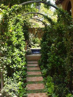 mediterranean garden pathway...