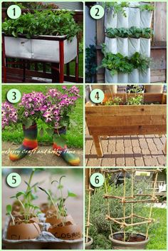 6 proyectos creativos Jardinería