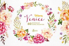 Warm Venice. Floral Collection Graphics This set of high quality hand painted watercolor separate floral elements, bouquets, wreath. Perfect by OctopusArtis