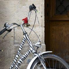 Zebra Bike!♥