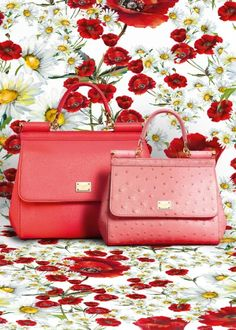 Dolce & Gabbana Summer 2016 Fashion Red Bags inside the Woman Collection 'Spring in the City'.