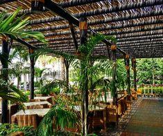 Lath pergola at Sofitel Dubai The Palm Sofitel Hotel, Wooden Pergola, Concrete Jungle, Walkway, Hotels And Resorts, Vegetable Garden, Dubai, Palm, Outdoor Structures