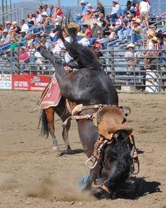 Ennis Montana Rodeo