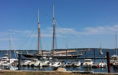 portland maine tall ships   tall ship Columbia anchored in Portland for this weekends tall ship ...