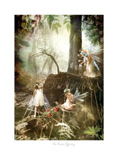 The Peace Offering .. Fairy  gift  Print Mounted or unmounted or two sizes of plaques to choose from-All  signed  By Charlotte Bird