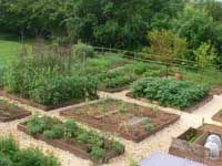 GrowGuides all about how to organize crop rotation in your garden