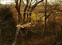 cabane arboricole