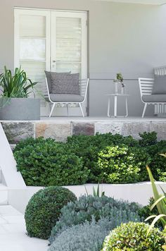 Low maintenance landscaping. good for by a pool. stone wall & succulents