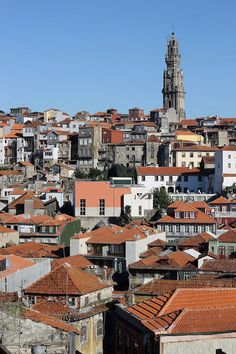 How to Spend a Perfect Day in Porto