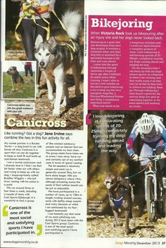 Dogs Monthly Outdoor Sports Canicross and Bikejoring