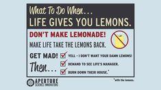 Life...Lemons...Lemonade...I don't think so