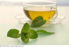 Pfefferminz - Kaugummi oder Tee, der Geruch wird immer mit einer erhöhten Wachsamkeit und Gehirnfunktion assoziiert, da es als Stimulant fungiert, wie Forscher glauben.
