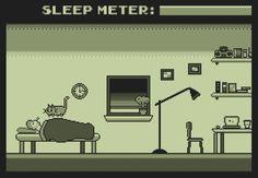 Dono cria jogo online em homenagem ao seu gato 'despertador