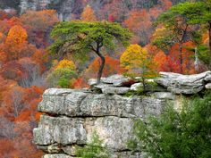 Buzzard's Roost From Millikan's Overlook, Fall Creek Falls State Resort Park, Tennessee