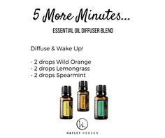 Have you ever woken up and immediately groaned, wishing you could have just 5 more minutes? Or maybe you just aren't a morning person. This blend will help you wake up refreshed even before you head for the coffee! Wild Orange energizes and uplifts the mind and body. Lemongrass can heighten awareness and promote a positive outlook. While Spearmint's sweet, refreshing aroma is cleansing and uplifting, making it ideal to evoke a sense of focus and positive mood. www.hayleyhobson.com