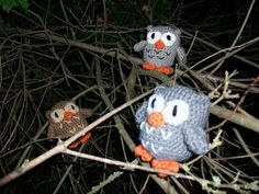 JenniCreates: Owl!