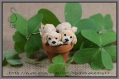 OOAK Dollhouse Miniature Four Gold Puppies in Pot Hand Flocked Animals Pet 1:12 #Handmade
