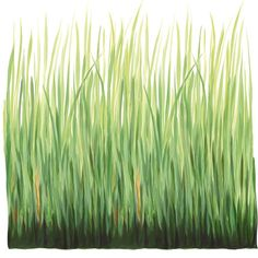 Tall Grass Wall Decal  or could paint?
