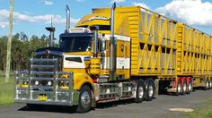 Kenworth 909 b double  cattle  crates