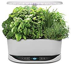 AeroGarden - Bounty with Gourmet Herb Seed Pod Kit Hydroponic Herb Garden, Hydroponic Growing, Epsom Salt Tomato Plants, Plants Grown In Water, Basil Plant, Smart Garden, Herb Seeds, Hydroponics System, Organic Seeds
