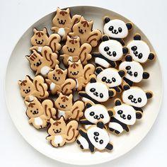 Squirrel and Panda cookies♡
