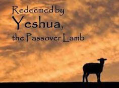 Резултат с изображение за passover lamb