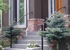 Custom made curved handrails define a great entrance! ELITE Railings Inc. - house and flat decorations Porch Step Railing, Porch Handrails, Exterior Handrail, Garden Railings, Outdoor Stair Railing, Metal Stair Railing, Stair Handrail, Porch Steps, Rebar Railing