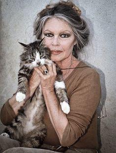 Brigitte Bardot -   a francuska modelka, piosenkarka i aktorka filmowa, symbol seksapilu w latach 50. i 60. XX wieku, później także działaczka na rzecz ochrony praw zwierząt. http://www.kotysos.org/daj-procenta-na-kocieta/