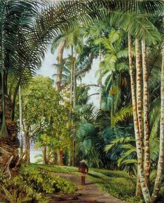 Walk under Palms with a Glimpse of the River at Sarawak, Borneo by Marianne North; 1876; Oil on board; Collection: Royal Botanic Gardens, Kew, England