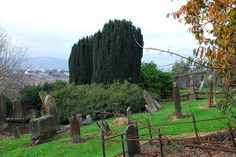 View over Knock Burial Ground by belfastcitycouncil, via Flickr
